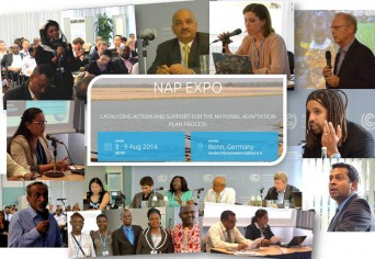 NAP Expo montage image